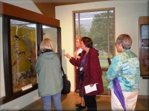 Here is a group of us (including me in the green coat on left) looking a displays at the Nature Center at the Middlecreek Wildlife Management Area in PA.