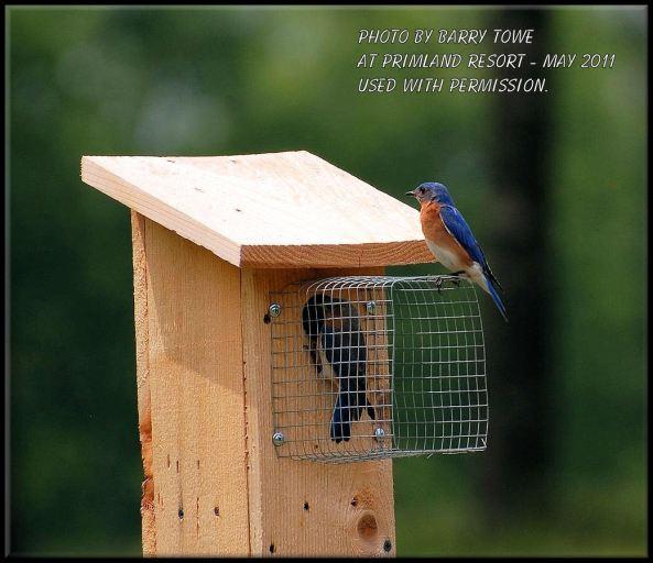 Photo by Barry Towe, Primland Resort, Meadows of Dan, VA