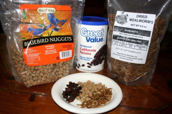 "I like to mix dried (or roasted) mealworms with soaked cut-up raisins and ""bluebird nuggets""."