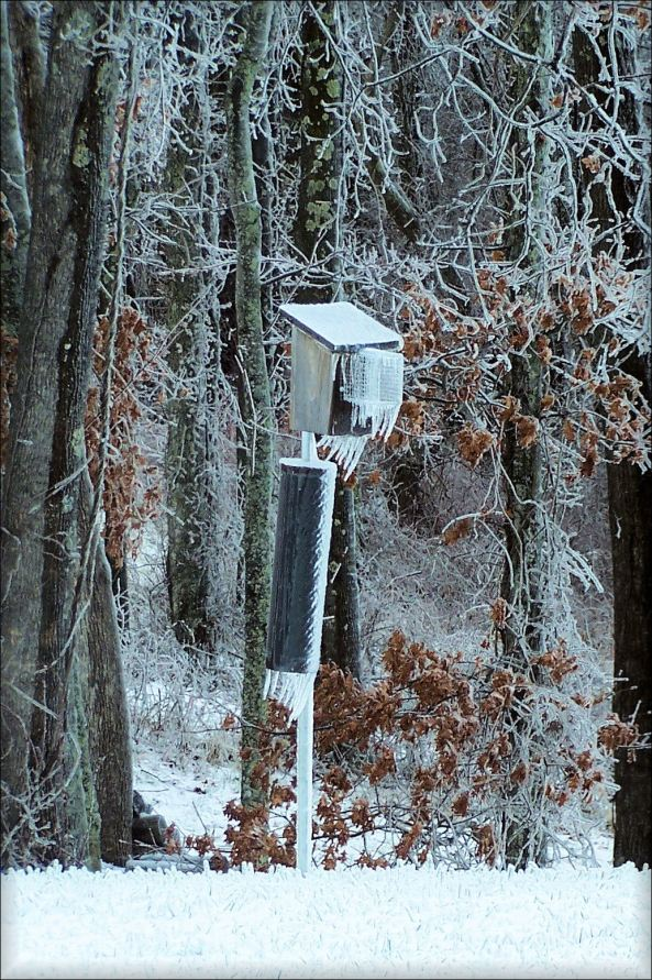 The ice pretty much covered everything, including the stovepipe baffle and the Noel guard. Photo by K. Hale, Floyd County, VA.