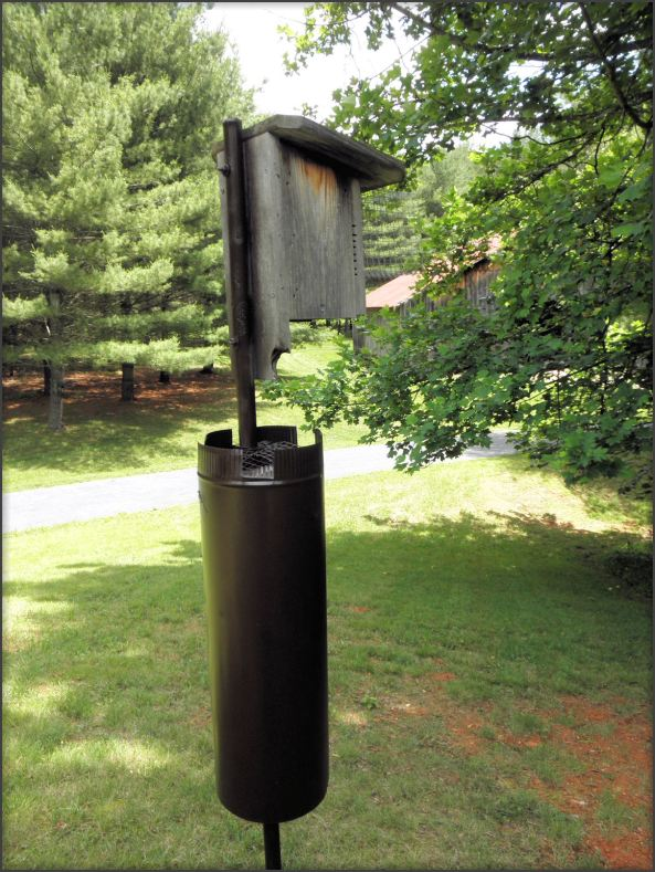 Typical and very effective nestbox with two predator guards. I painted the stovepipe a dark brown--looks nice. This is one of the original boxes built in the workshop in 2007 and was retrofitted from front opening to side opening to accommodate the hardware cloth Noel Guard.