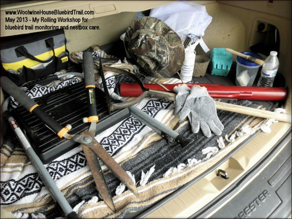 I have a rolling workshop!   This is the back of my car--the things I don't carry in my trail bag but have handy on the trail, if needed.
