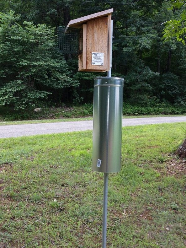 """My nestbox setups today.  8"""" wide wobblilng stovepipe baffle and the Noel Guard made from PVC coated hardware cloth."""