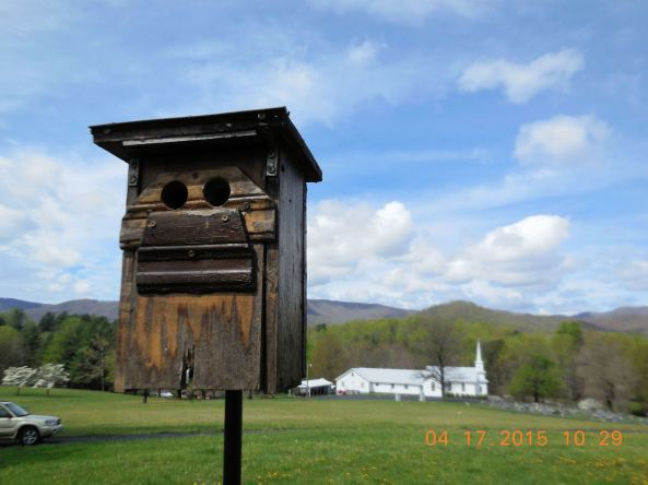 2-Hole Mansion in its 6th year of success. See 2-Hole Mansion page for story. EABL vs HOSP. I plan to replace the mansion, either refinished or with a new one. I may refurbish this one as a display to educate others about this nestbox option where trapping HOSP is not possible.